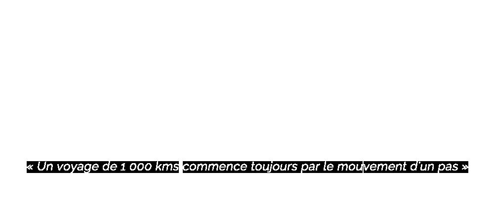 Logo Debaere Consulting blanc